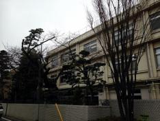 私立富士見中学校