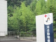 河合動物病院