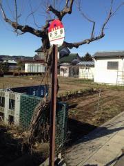 「新田原」バス停留所