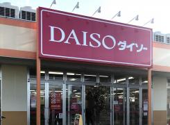 ザ・ダイソー コピオ飯能新光店
