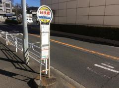 「日枝橋」バス停留所