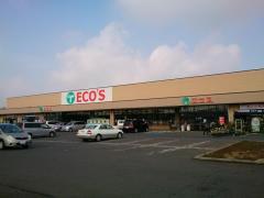 エコス真壁店