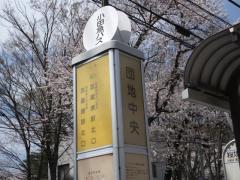 「団地中央(桜堤団地)」バス停留所