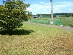五戸町ひばり野公園陸上競技場・サッカー場