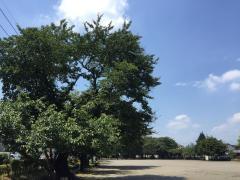 陽南第2公園