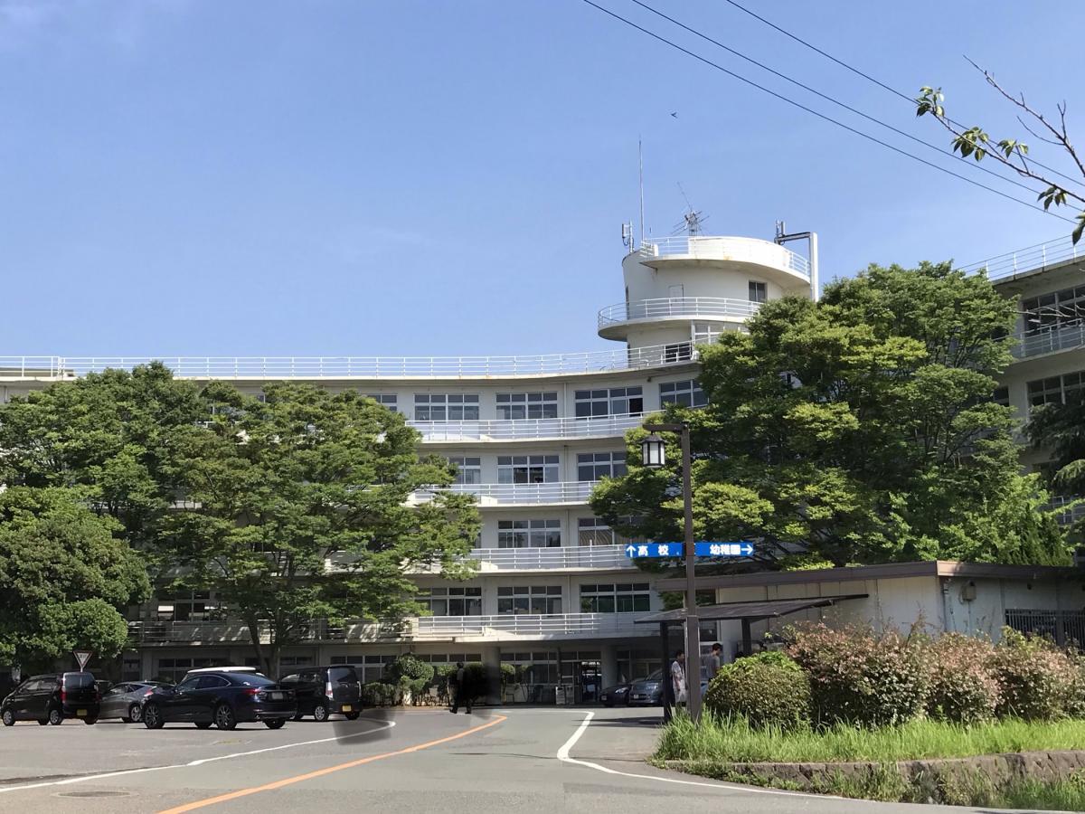 赤十字 国際 看護 九州 大学 日本