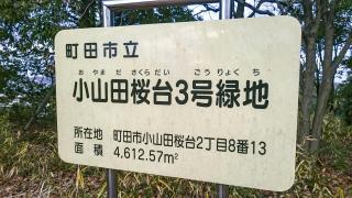 小山田桜台3号緑地
