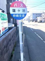 「蓮ケ池」バス停留所