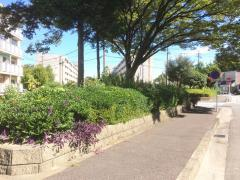 稲永新田街園