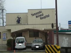 山崎動物病院