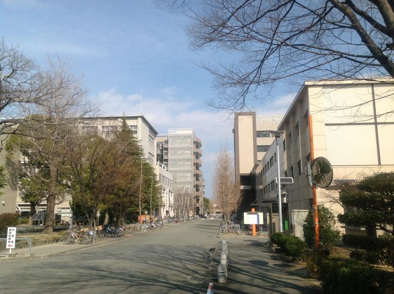 徳島 大学 大学院