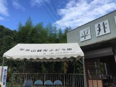 平井山観光ぶどう園