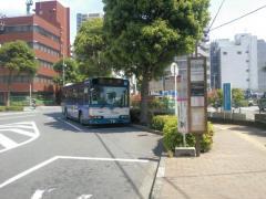 「船橋市役所」バス停留所