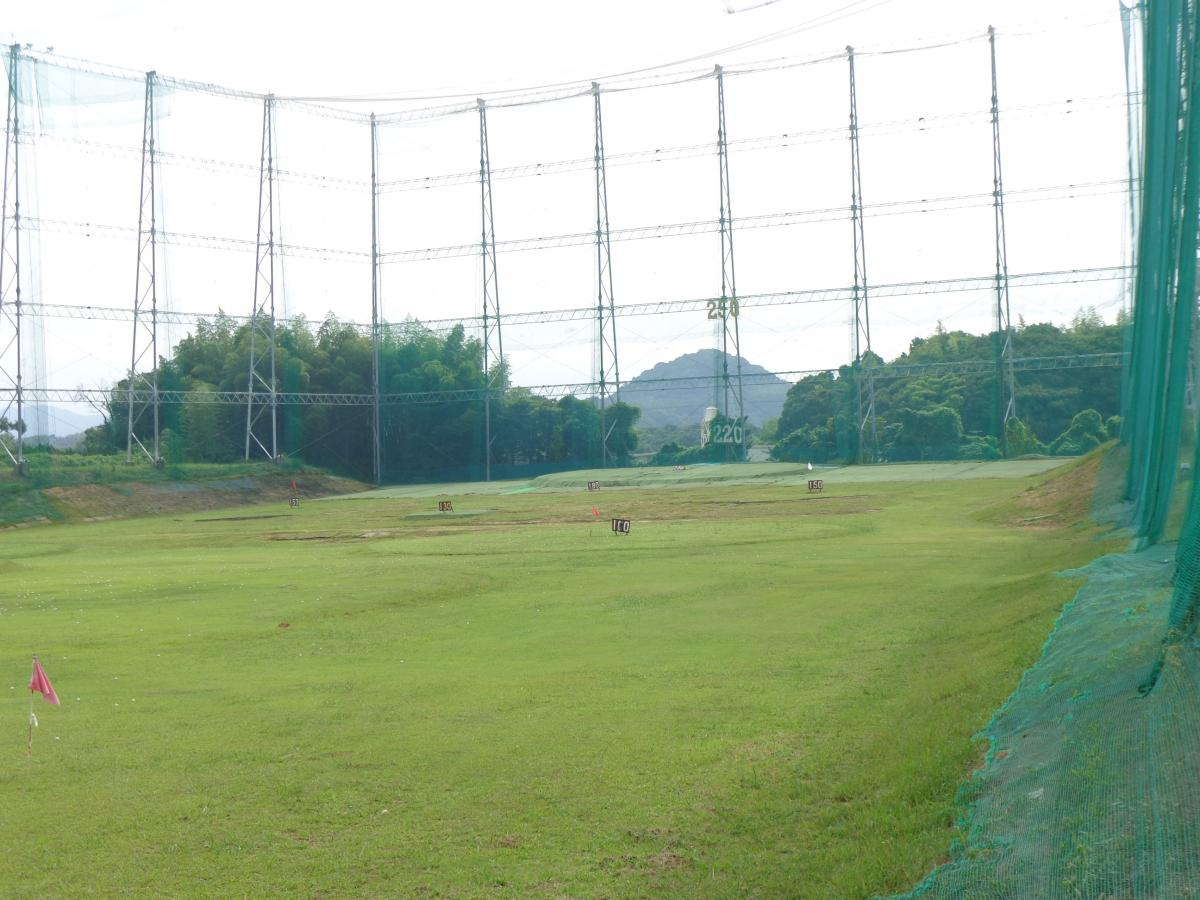 ゴルフ カスタ ネット