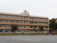 高根小学校