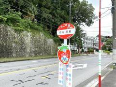 「市役所前」バス停留所