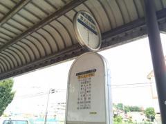 「野火止小学校」バス停留所