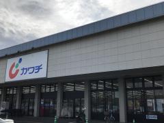 カワチ薬品 土浦南店