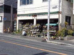 中村園芸金魚店