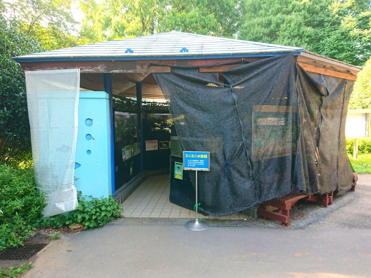 ミニミニ水族館
