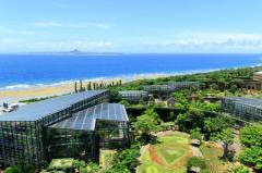 海洋博公園熱帯・亜熱帯都市緑化植物園