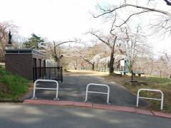 千歳山公園
