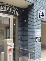 江浜獣医科病院