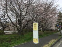 「立野緑地入口」バス停留所