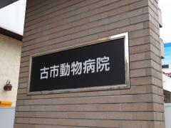 古市動物病院