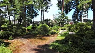 天真寺の庭園