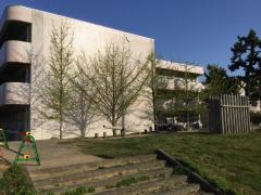 新潟大学教育人間科学部附属新潟小学校