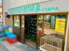 喜沢熱帯魚店