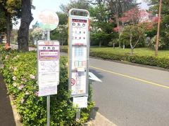 「白糸台」バス停留所