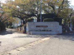 八幡中央高校