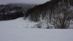 ハチ北高原スキー場
