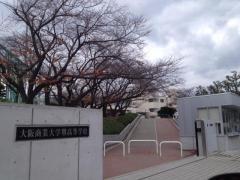大阪商業大学堺高校
