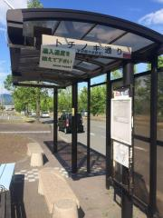 「トチノキ通り」バス停留所