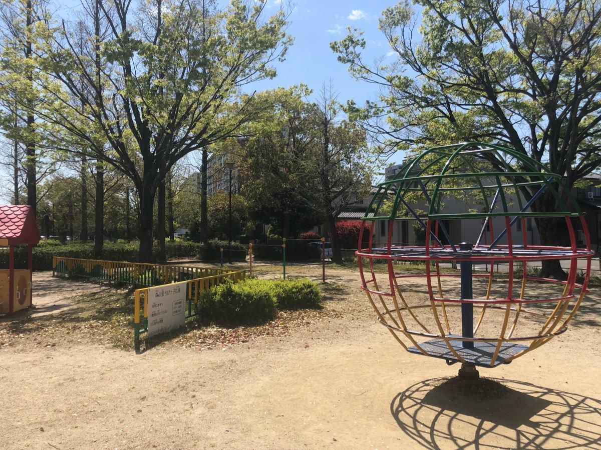 公園内の様子