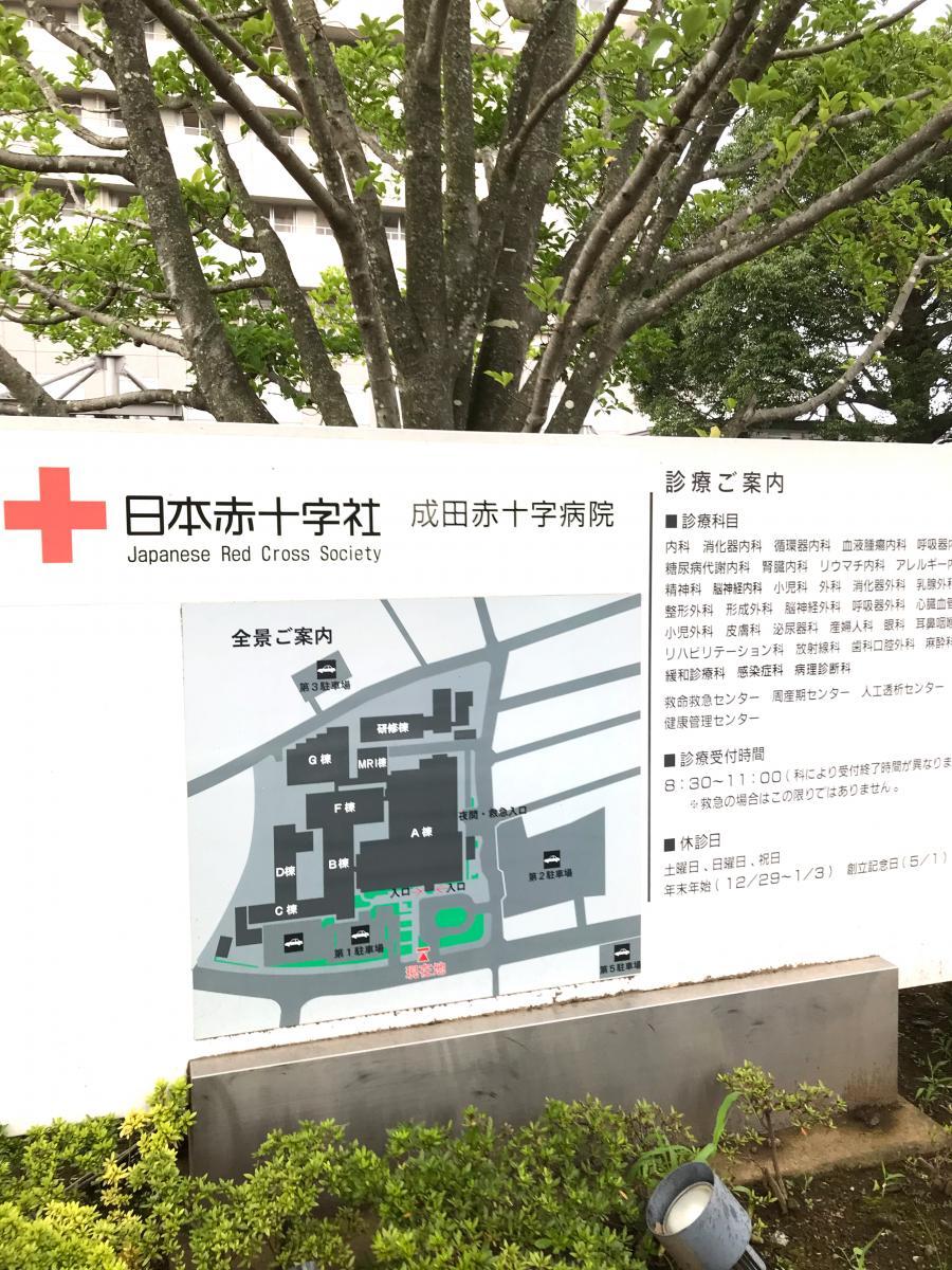 赤十字 病院 成田