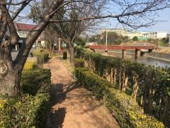 瀬戸川緑地